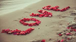صور حلوه وجميلة خلفيات طبيعية ورومانسية رائعة صور حلوه