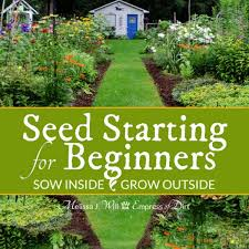 seed starting for beginners sow inside