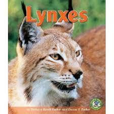 Lynxes by Barbara Keevil Parker