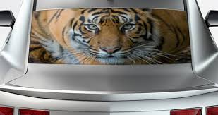 Crouching Tiger See Through Car Window Decal Dezign With A Z