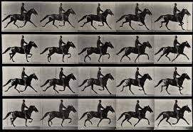 Eadweard Muybridge: Human and Animal Locomotion, with a Live Score by Kite  | Unframed