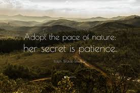 quotes about nature and happiness nature quotes