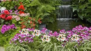 flower garden 高清晰度电视桌面