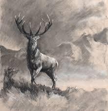 Ruth Buchanan Art - drawing, figurative & equestrian artist ...