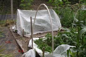 gardening covered garden beds will add