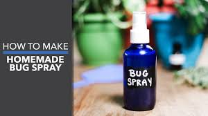 homemade bug spray dr axe