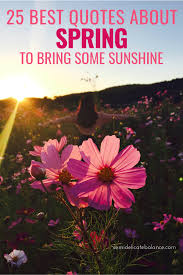 best quotes about spring to bring some sunshine to your life
