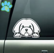 Havanese Peeking Car Decal Havanese Dog Decal Havanese Decals For Dog Lover Mom Dad Grandma Sitter Groomer Walker Gift For Her Havanese Dogs Havanese Dog Decals