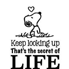Snoopy Quote Vinyl Wall Decal Never Stop Smiling Charlie Brown Peanuts Cartoon Character Stickers For Toddler Baby Kids Room Ot Bedrooms 18 X20 Walmart Com Walmart Com