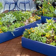 Vegetable Gardening For Beginners Gardener S Supply