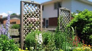 fence taller for better privacy