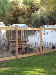 25 Best Cheap Backyard Fencing Ideas For Dogs 30 Chicken Fence Backyard Fences Cheap Backyard