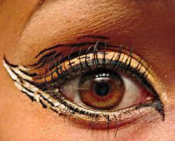 tiger eye makeup makeup