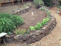 raised beds in your edible garden
