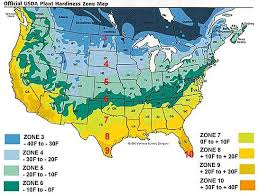 official usda plant hardiness zone map