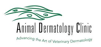 Meet Our Team | Hilary Chan — Animal Dermatology Clinic