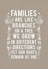 best family quotes that remind you to cherish the people you