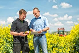BASF's new focused approach boosts agricultural innovation ...