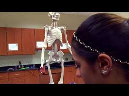 Health Science Academy full time Mercer County Technical Schools - YouTube