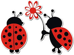 Amazon Com Cute Loving Ladybug Giving Flower Decal Vinyl Decal For Indoor Or Outdoor Use Cars Laptops Decor Windows And More 5in Automotive