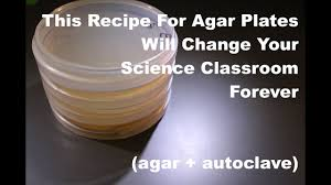 this recipe for agar plates will change