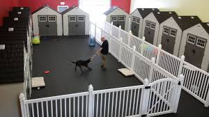 Why Dog Daycare Owners Are Choosing Wambam Fence Dogdaycare Fence Dog Daycare Design Dog Daycare Business Dog Boarding Ideas