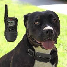 Remote Dog Training Collar 330 Yard Radius Lcd 100lv Shock Pet Bark Walmart Com Walmart Com
