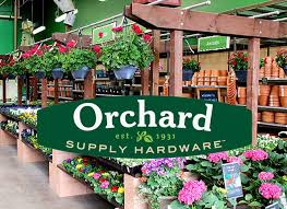 my visit to orchard supply hardware