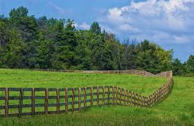 Wood Horse Fence What Is The Best Wooden Horse Corral Fencing Option Pine River Group