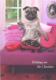 the inky paw pug gifts pug cards pug