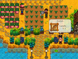 stardew valley co op how to start your