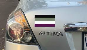Asexual Pride Flag Car Bumper Sticker Decal Pro Lgbtq Lgbt Pride Ebay