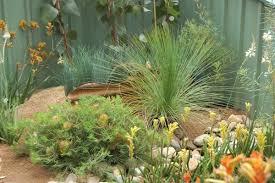 amazing australian native garden design