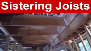 vlog 5 sistering joists you