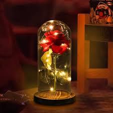 nosii led light string surround beauty