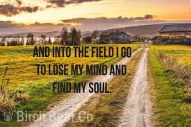 Find My Soul Farm Decal Country Cow Country Decal Farm Decal Car Decal Window Wall Sticker Home Decal Mirror Bathroom Dec Country Cow Outdoor Country