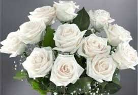 History and Meaning of White Roses - ProFlowers Blog