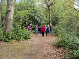 Woodland Management | Perry Wood