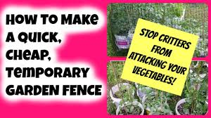 How To Make A Quick Cheap Temporary Garden Fence To Stop Critters From Eating Your Vegetables Youtube