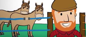 Horse Paddock Fences Important Things You Should Keep In Mind Litzclip