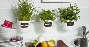 20 indoor herb garden designs ideas