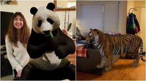 Google 3D Animals: From Tiger, Giant ...
