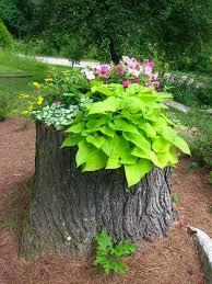 19 blazing tree stump planter ideas