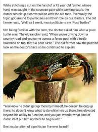 Blog Trek The Next Generation Photo Story Post Turtle