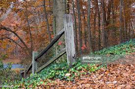 Fall Trees And Fence Posts High Res Stock Photo Getty Images