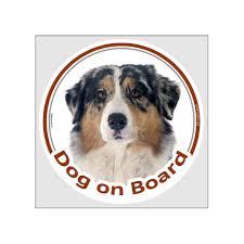 Not An Australian Shepherd Just A Dog 5 Sticker Collectibles Decals Stickers Valtek Cl
