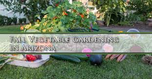 fall vegetable gardening in arizona