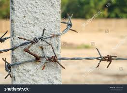 Concrete Barbed Wire Fence Post Parks Outdoor Stock Image 139425968