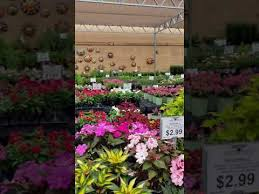 garden center nursery in estero florida
