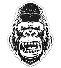 Amazon Com Gt Graphics Express Angry Ape Gorilla 12 Vinyl Sticker Waterproof Decal Home Kitchen